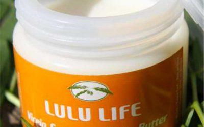 Kajo Keji Shea Nut Butter Oil Capacity Building Project